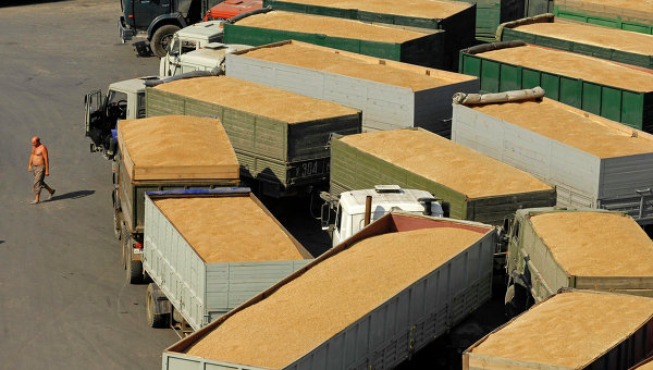 La Russie recourt à ses réserves stratégiques pour faire baisser les prix des céréales