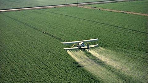 Traitement aérien des céréales contre les maladies fongiques
