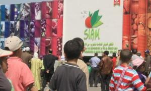 Meknes_Siam-2013