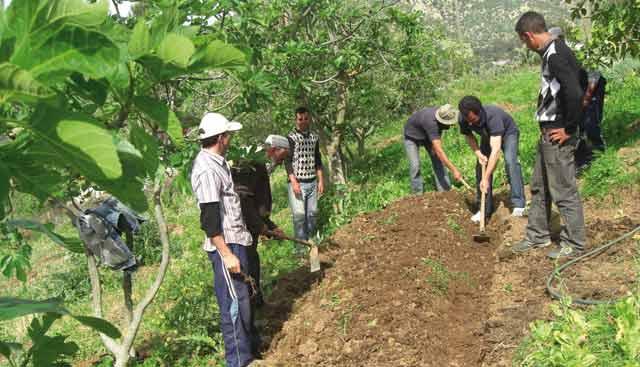 Don de 60 millions d'euros de l'UE aux petits agriculteurs marocains