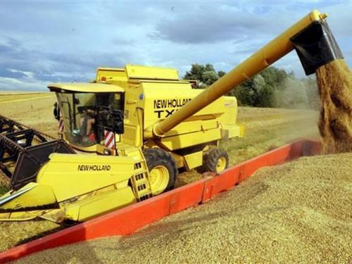 La production mondiale de céréales en légère baisse en 2014