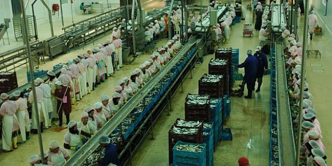 Le Maroc premier producteur/exportateur mondial de la Sardine