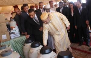 Maroc-Mali-Insemination