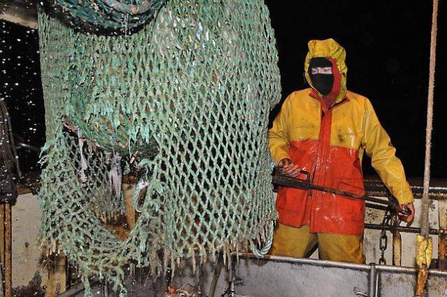 UE-Pêche: L'interdiction qui inquiète les pêcheurs