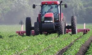 maroc-recensement agricole