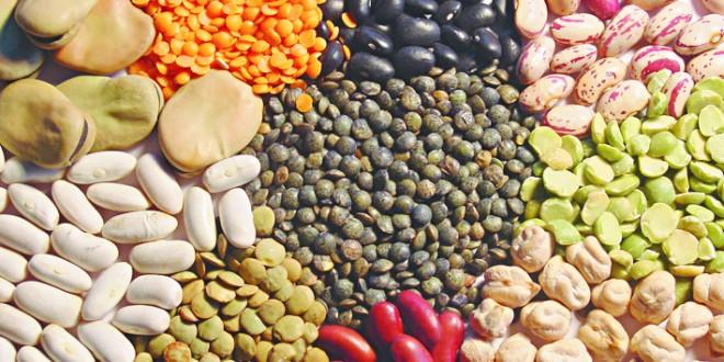 Maroc: Suspension provisoire des droits de douane pour lentilles et pois chiches