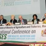 La place des légumineuses dans la chaîne alimentaire débattue à Marrakech