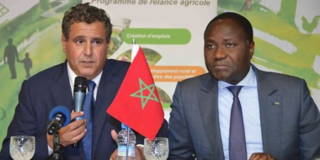 Maroc-Côte d'Ivoire-Gabon: Un partenariat agricole tripartite  bientôt sur les rails