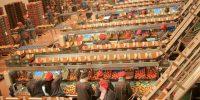 Nette amélioration des exportations agricoles marocaines vers la Russie
