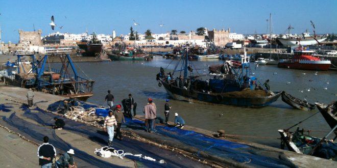 Pêche: Les débarquements à Essaouira rapportent 47 millions de dirhams