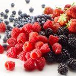 Les fruits rouges marocains s'exportent bien vers l'UE et les USA
