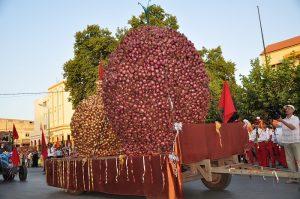 festival-2-oignon