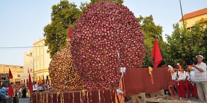 La moitié de la production nationale des oignons provient de Fès Meknès