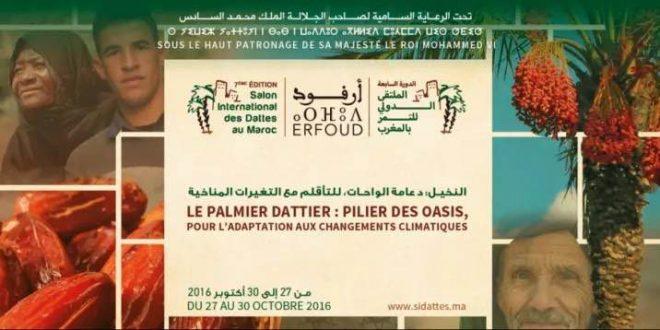 Maroc-Sidattes: Une production record de 128.000 tonnes de Dattes en 2016