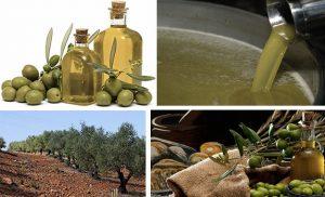 huile-olive