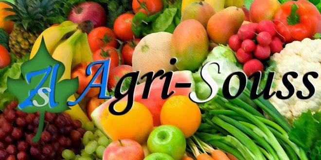 Les petits producteurs d'agrumes du Souss Massa se plaignent de la faiblesse des prix