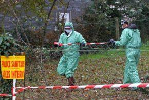 Les aviculteurs français mis à mal par la réapparition de la grippe aviaire