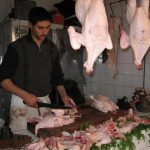 Un séminaire à Casablanca pour débattre de l'abattage des volailles