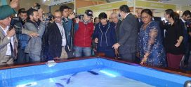 Ouverture à Agadir du 4ème Salon International de la pêche Halieutis-2017
