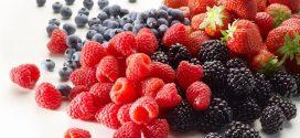 Le festival national des petits fruits rouges du 16 au 19 mars à Larache