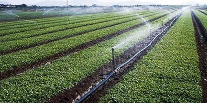 Agriculture: Le Maroc obtient un don de 51,5 M€  du Fonds vert pour le climat