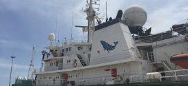 Greenpeace intercepte 37 navires pour pêche illégale au large des côtes ouest-africaines