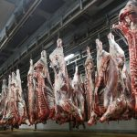Les abattoirs de Casablanca agréés par l'ONSSA certifiés ISO 22000