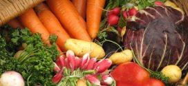 Les produits bio marocains affichent bonne mine à l'export en 2016