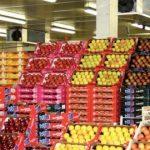 Les exportations de produits agricoles marocains en hausse début 2017