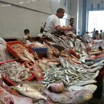 Maroc : Flambée du prix de la sardine en ce mois de Ramadan
