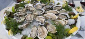 Maroc-Pêche: Interdiction de la collecte et la vente des coquillages à Safi