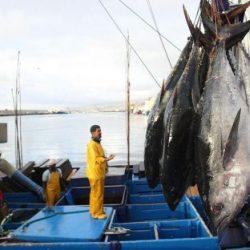 Les négociations de l'accord de pêche Maroc-UE butent encore sur des questions techniques