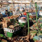 Maroc-Pêche côtière et artisanale : Les débarquements en hausse de 19%, à fin mars 2019