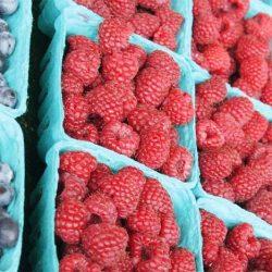 UE-Agriculture : La framboise marocaine donne du fil à retordre aux  agriculteurs espagnols