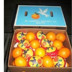 Découverte en Belgique et au Danemark d'un taux anormal de résidus de pesticides dans des oranges importées