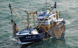 peche-Maroc-UE-retour-bateaux