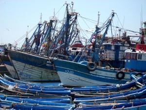 Maroc-Peche-TVA