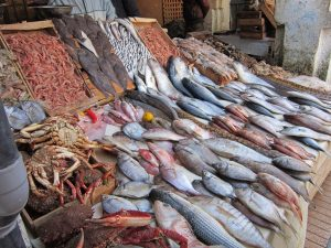 poisson-prix-eleves